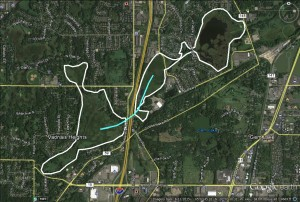 The place where I met a Blanding's turtle on the Interstate.  White outlines her wetland territory and the blue line was her path across the highway.