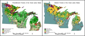 "Big changes in the north woods from the late 1800s to now.  The yellow of aspen-birch forest in the modern map has replaced the greens of the conifer-rich forests of the presettlement map.  From Cole et al. 1999 USGS ""Historical Landcover Changes in the Great Lakes Region""."