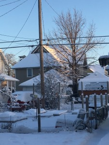View out my backyard this morning—snow on the garden and my neighbor's roof catching the first light of day.  J. Armstrong